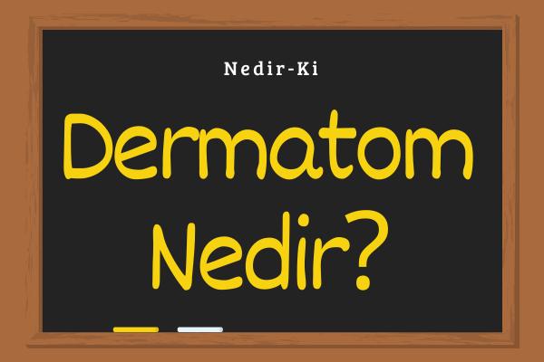 dermatom-bolgeleri