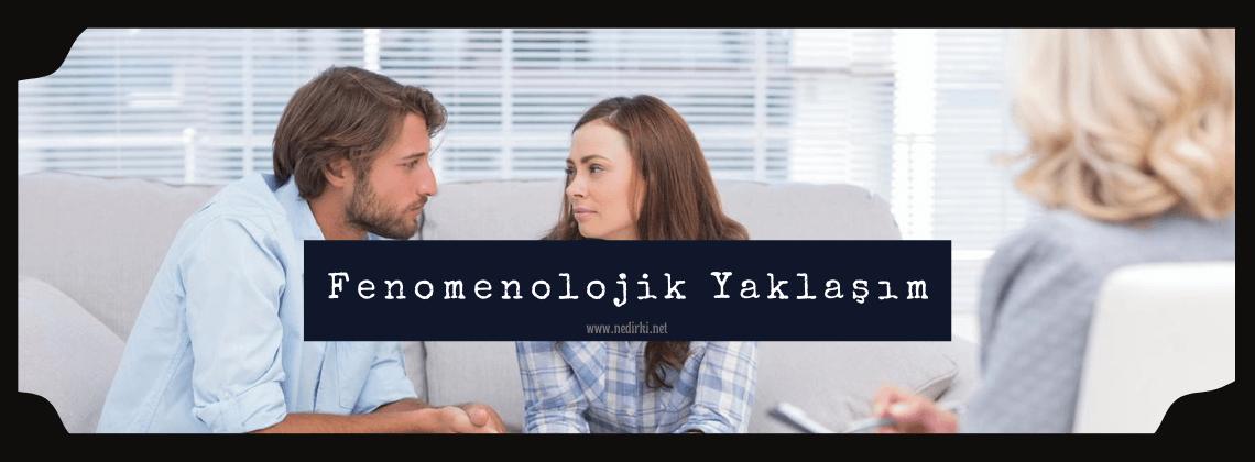 fenomenolojik-yontemler